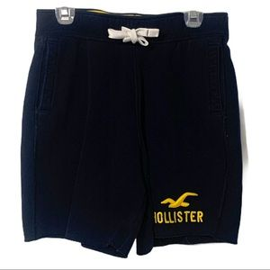 Hollister California Men's Medium Shorts Bird